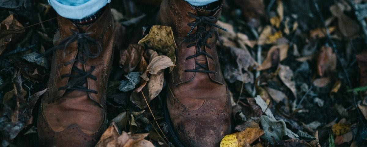 portada pies en otoño