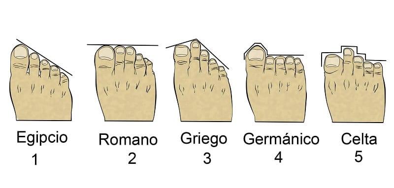 pie griego tipos de pies